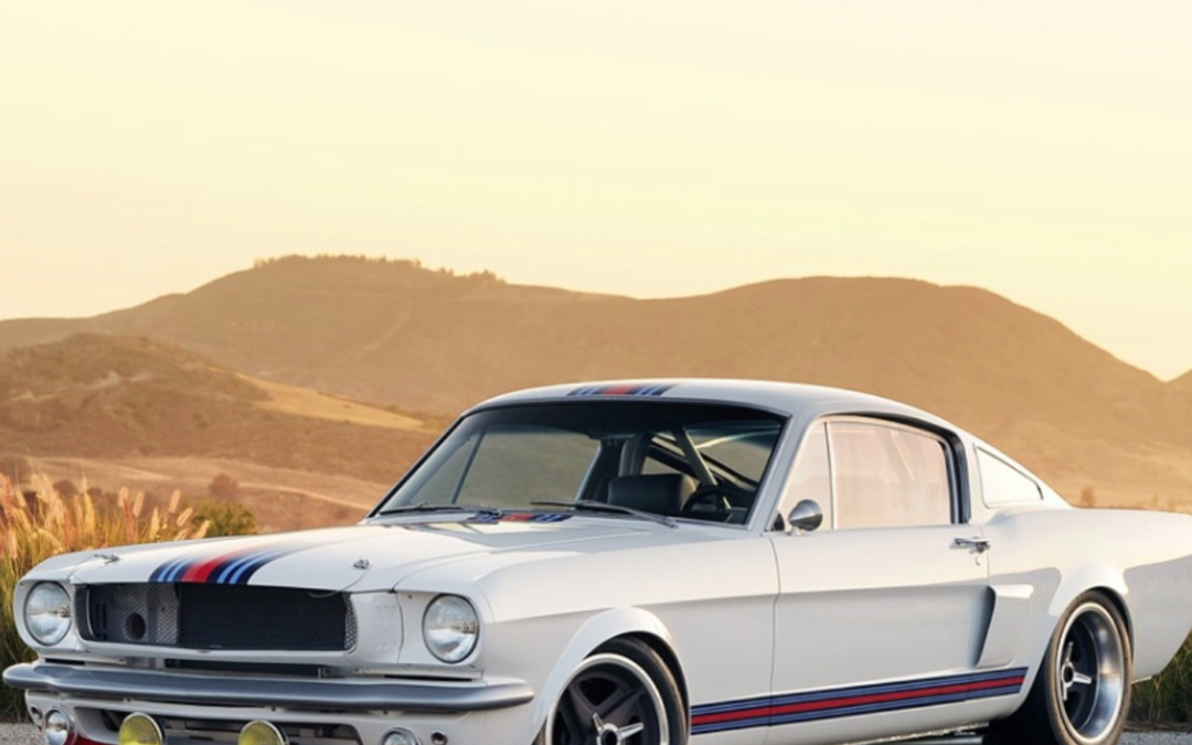 Brand Builder for Saleen Automotive, West Coast Customs and Shelby, Amy Boylan Interview